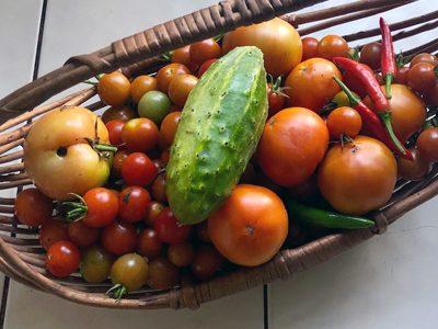 valerie-george-vegetables